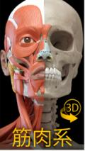 解剖学アプリ,おすすめ